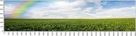 арт.№411 (Панорамы природы 5)