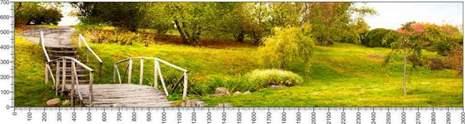 арт.№417 (Панорамы природы 11)