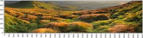 арт.№424 (Панорамы природы 18)
