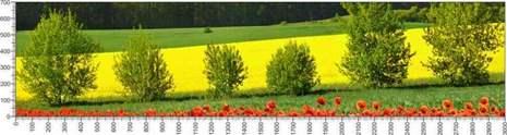 арт.№429 (Панорамы природы 23)