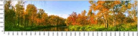 арт.№459 (Панорамы природы 53)