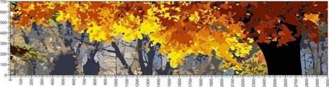 арт.№478 (Панорамы природы 72)