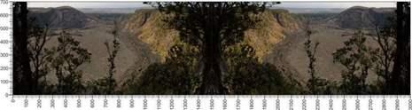 арт.№484 (Панорамы природы 78)