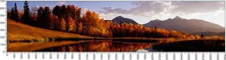 арт.№486 (Панорамы природы 80)