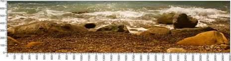 арт.№497 (Панорамы природы 91)